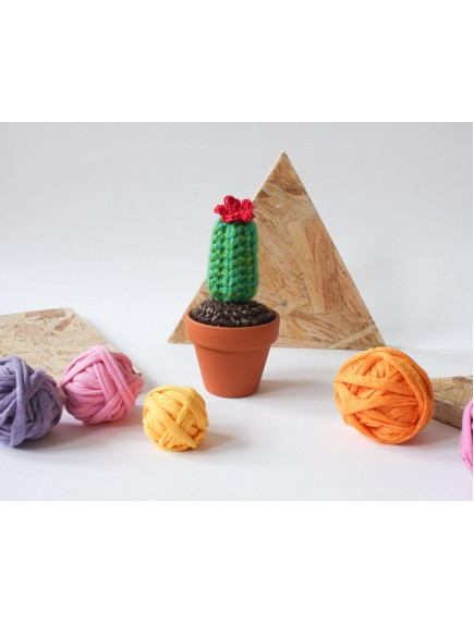 Handmade Mini Crochet long pattern Cactus with red flower