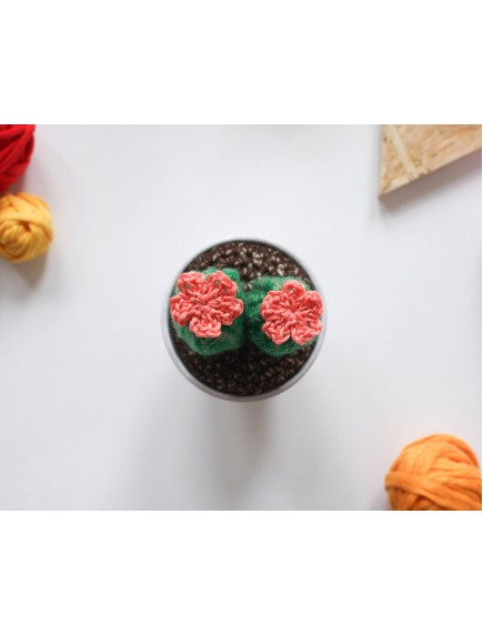 Handmade Mini Crochet Cactus with two stem and flowers